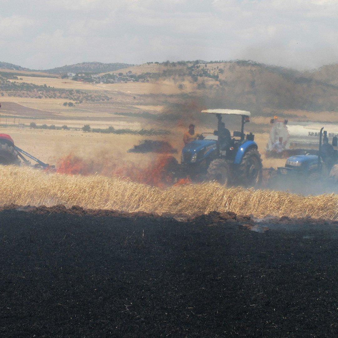 220 dönüm buğday tarlası yandı