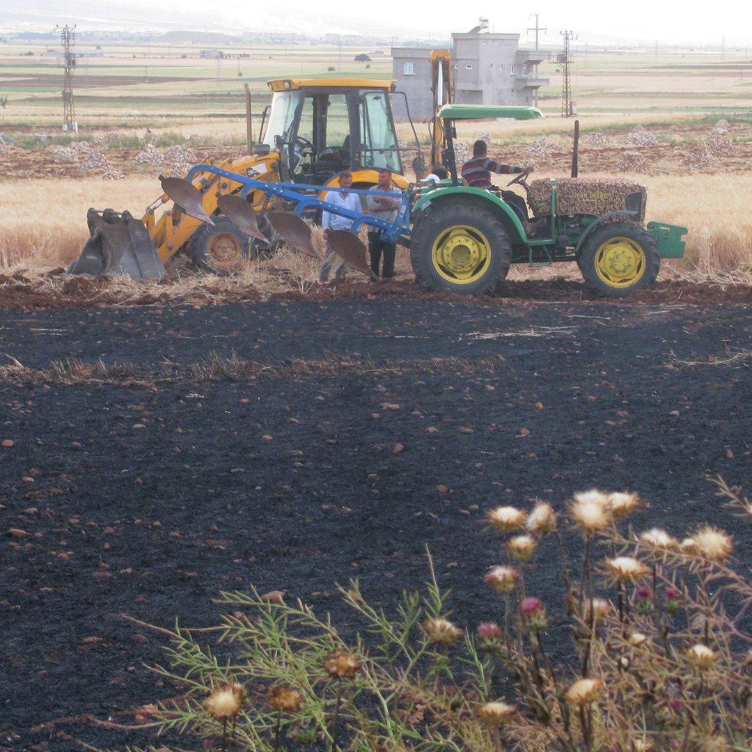 52 dönüm arazide ekili buğday ve arpa kül oldu