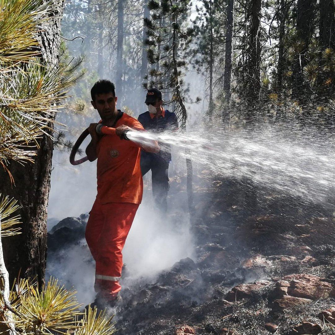 AFAD Kayseri yangın bölgesinde çalışmalarını sürdürüyor