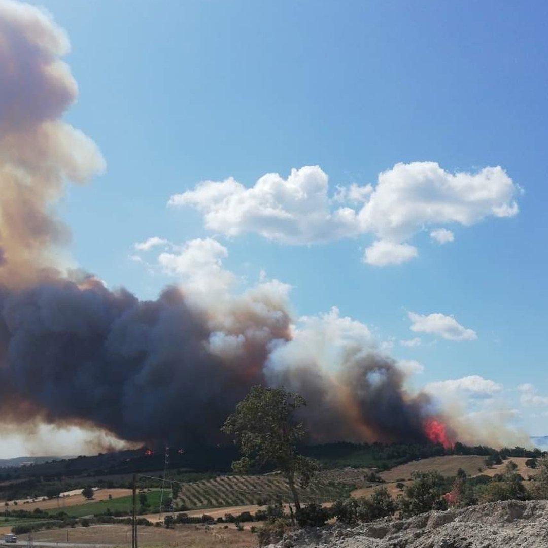 Çanakkale'de orman yangını alevler gökyüzünü kapladı