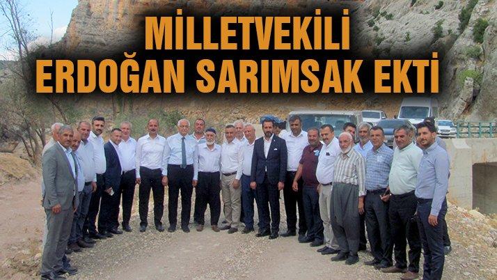 Milletvekili Erdoğan sarımsak ekti