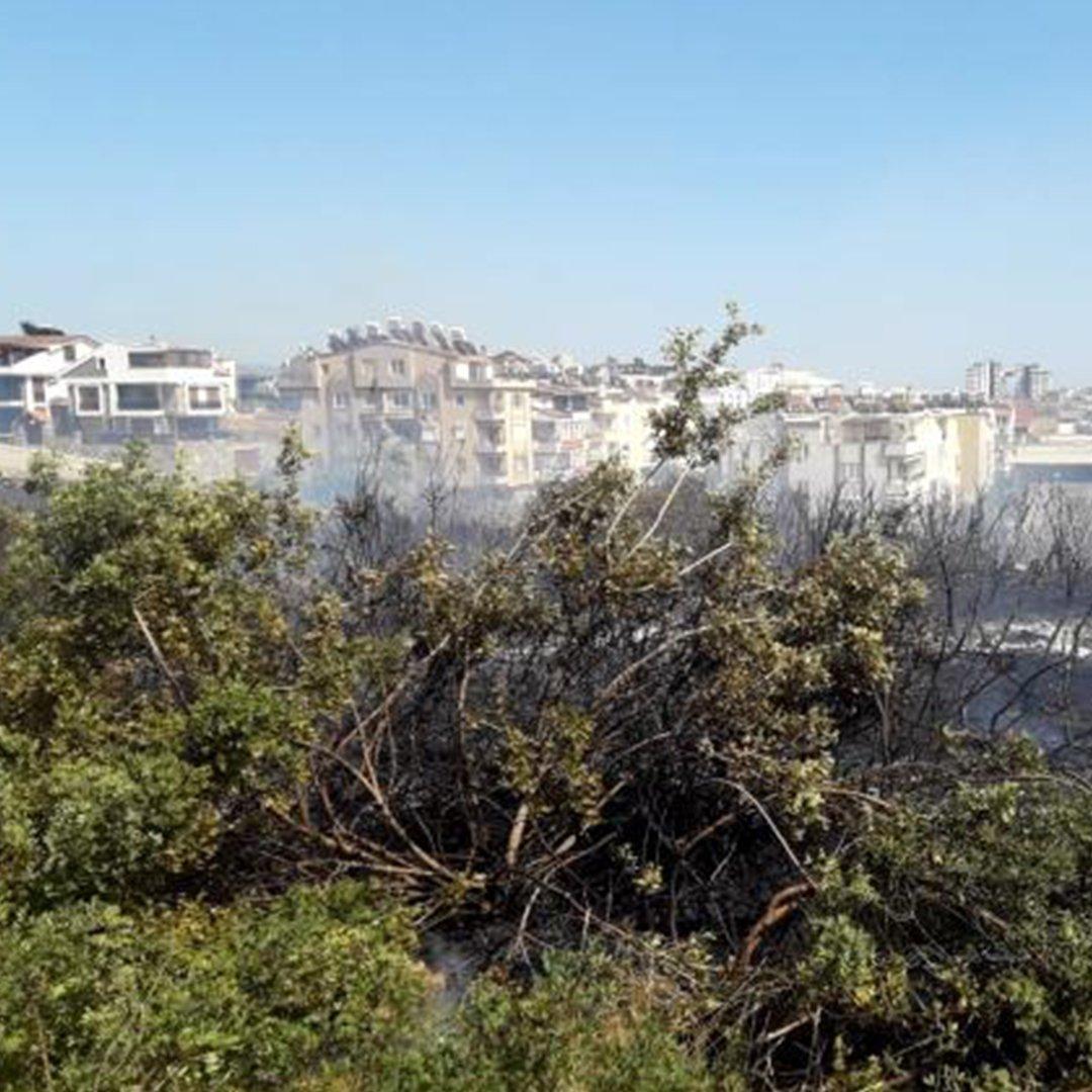 Didim'de çıkan yangın evlere sıçramadan kontrol altına alındı