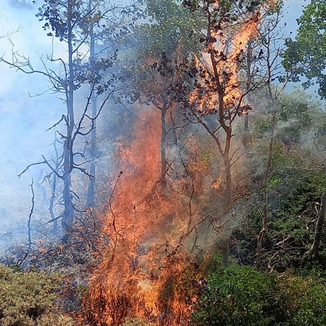 Doğa harikası Nemrut kalderasında korkutan yangın