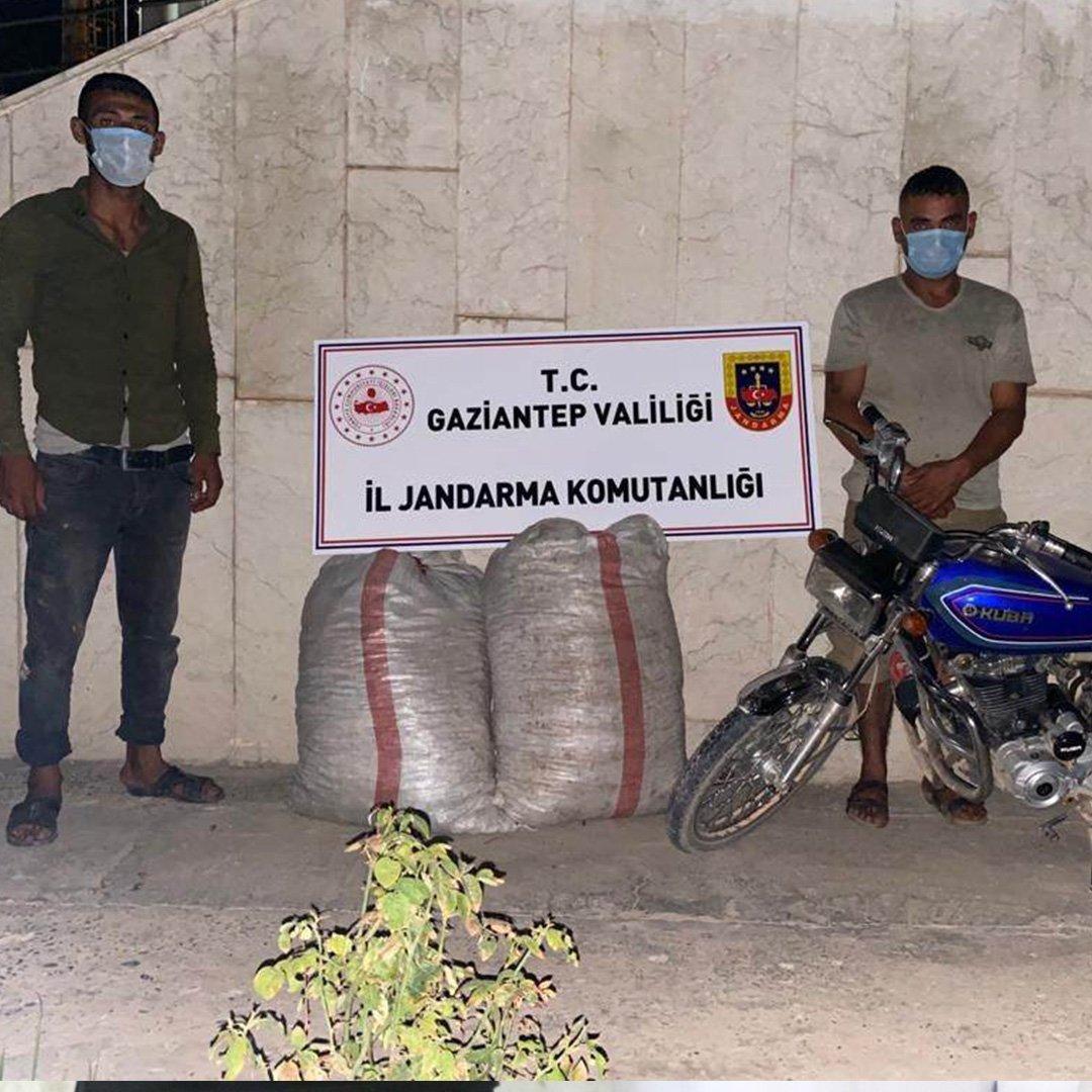 Fıstık hırsızları jandarmaya yakalandı