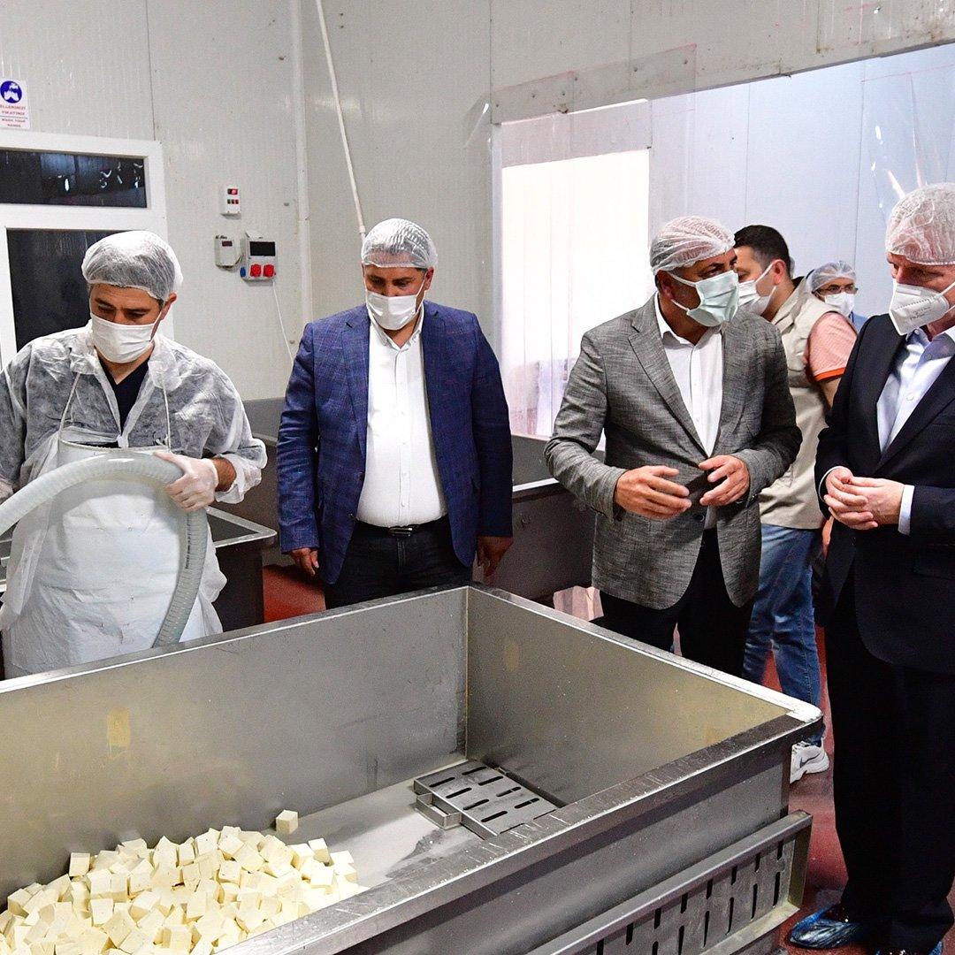 Gaziantep Valiliğinden süt üreticilerine destek