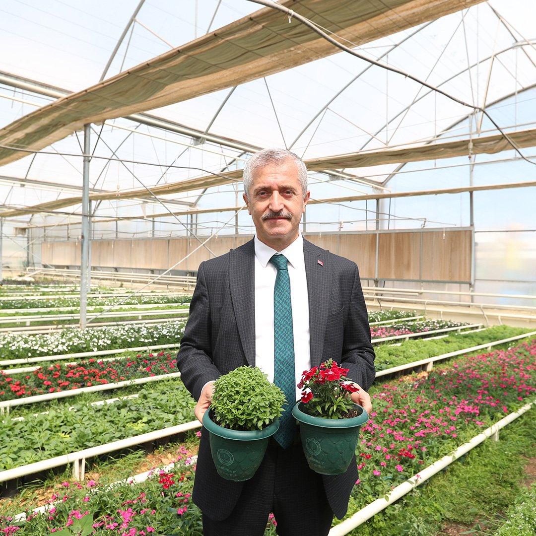 Her yıl 2 milyon çiçek üretiliyor