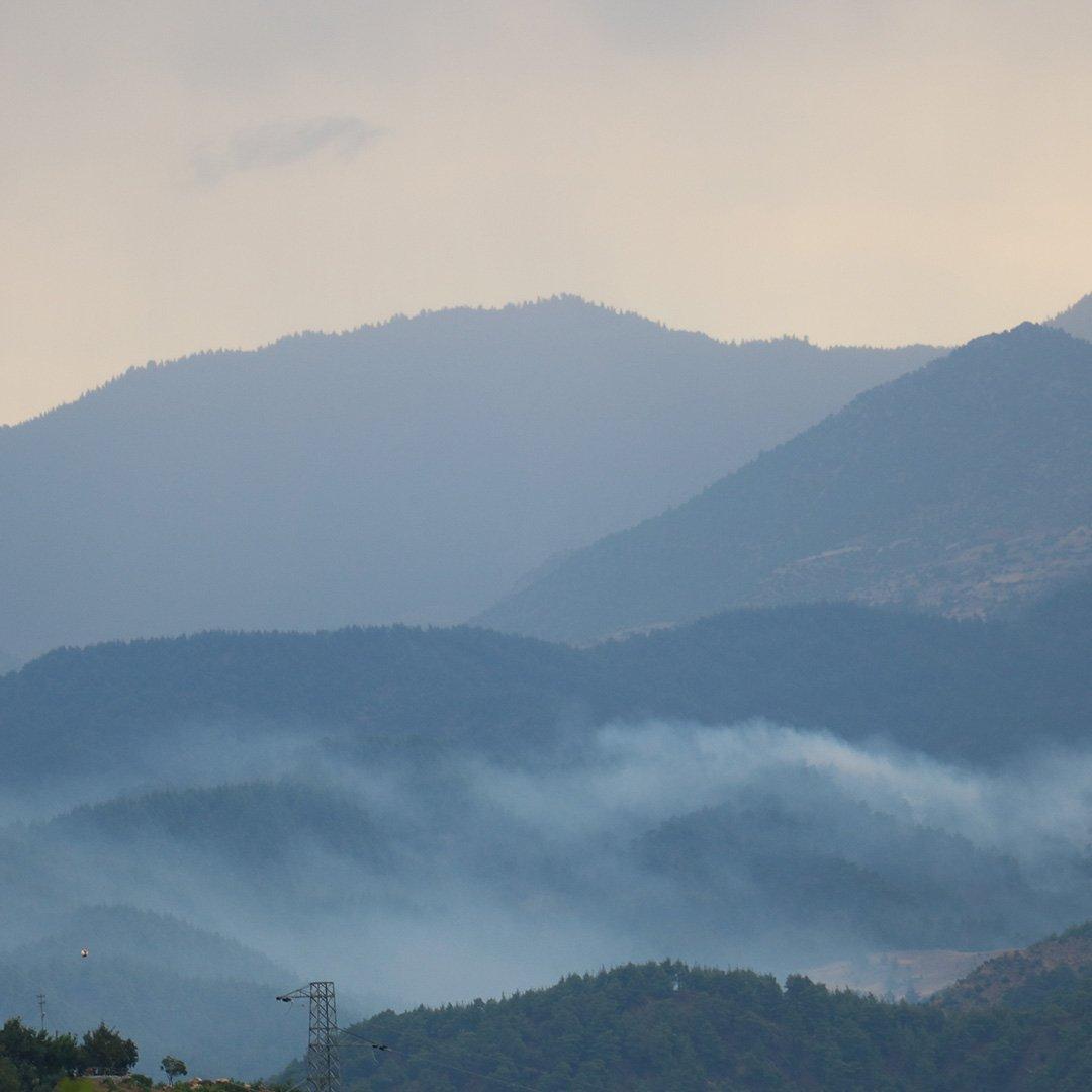 Kahramanmaraş'ta orman yangınında 3 hektar alan zarar gördü