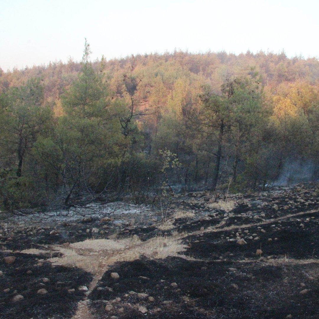 Kilis'teki orman yangını 5 buçuk saatte güçlükle kontrol altına alındı