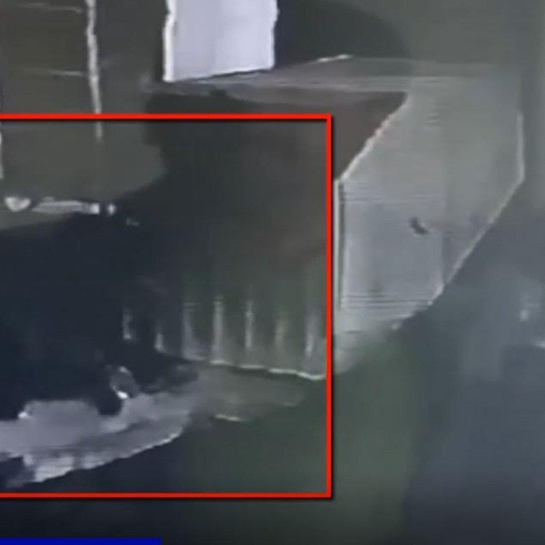 Mazgal hırsızları polisten kaçamadı