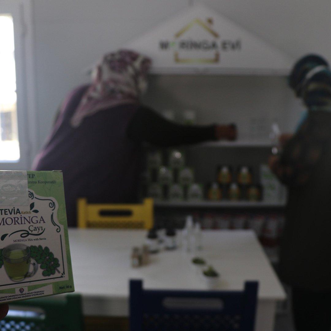 Moringa bitkisi sayesinde iş kadını oldular