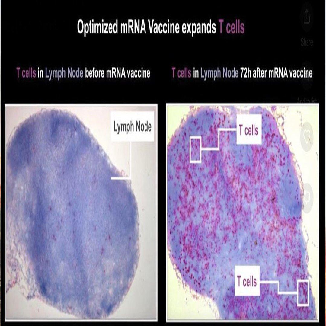 Özlem Türeci ve Uğur Şahin'den dikkat çeken Covid-19 aşısı açıklamaları