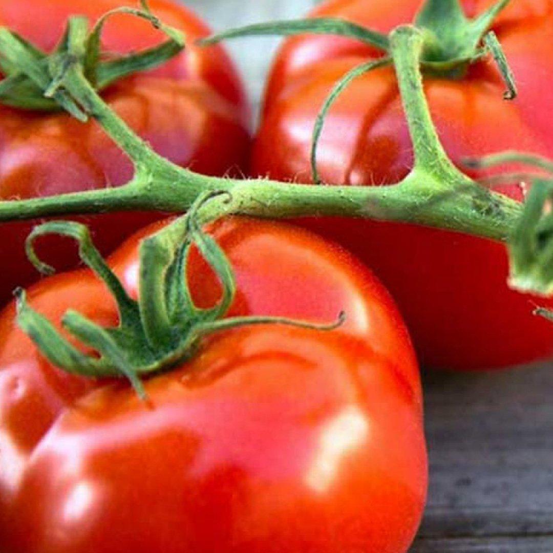 Rusya Türkiye'den 300 bin tona domates daha alacak