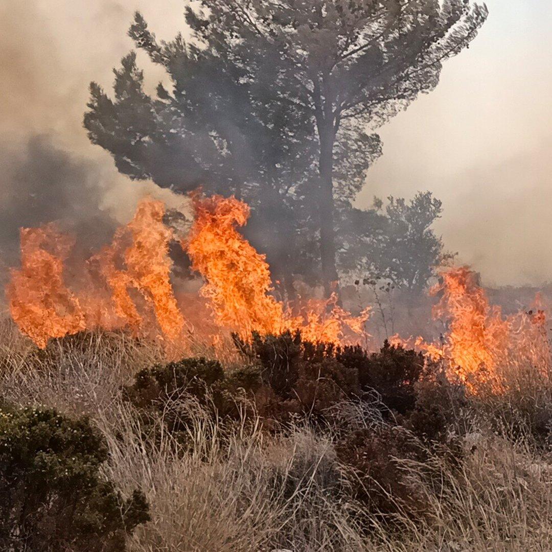 Seka'da çıkan yangın korkuttu