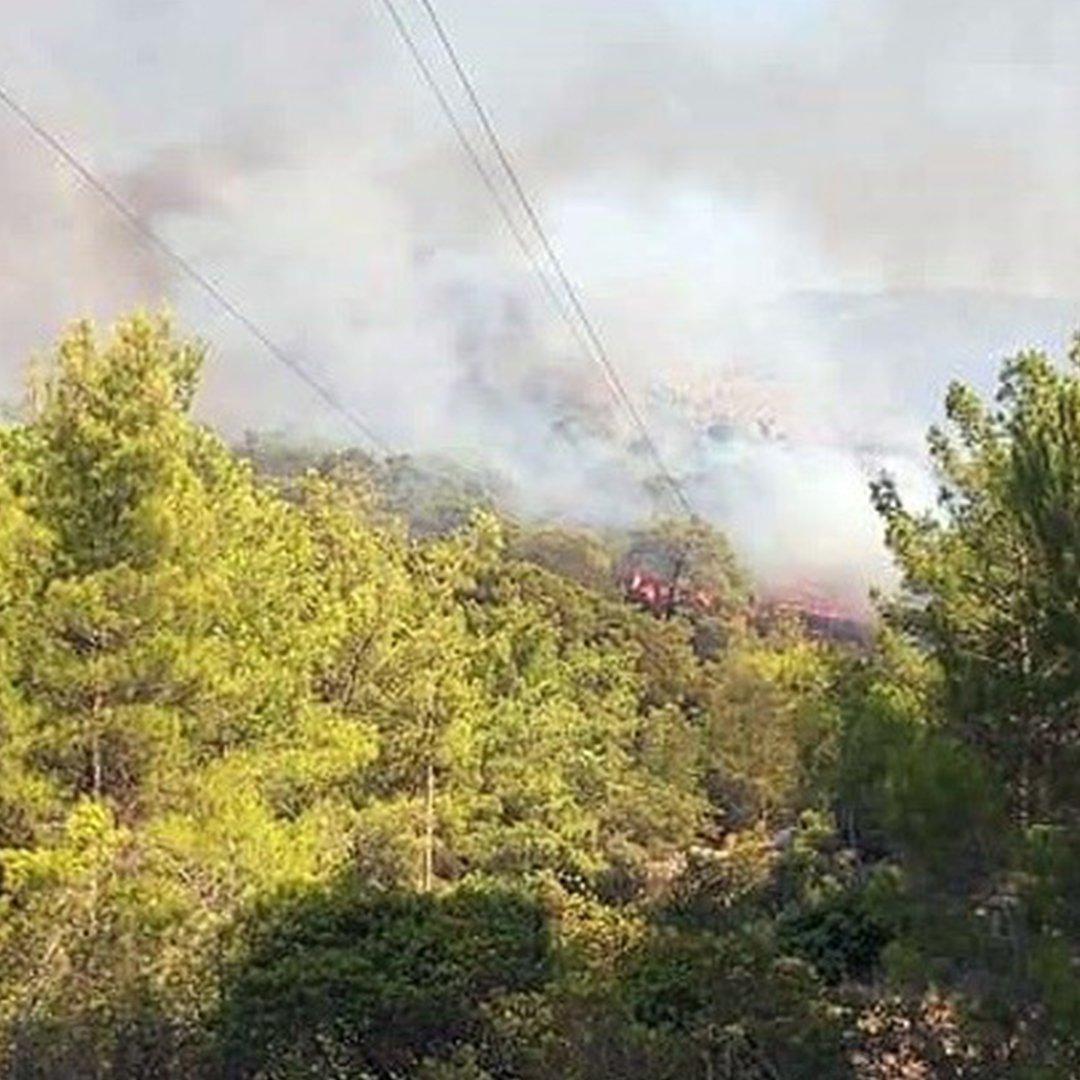Seydikemer'de orman yangını
